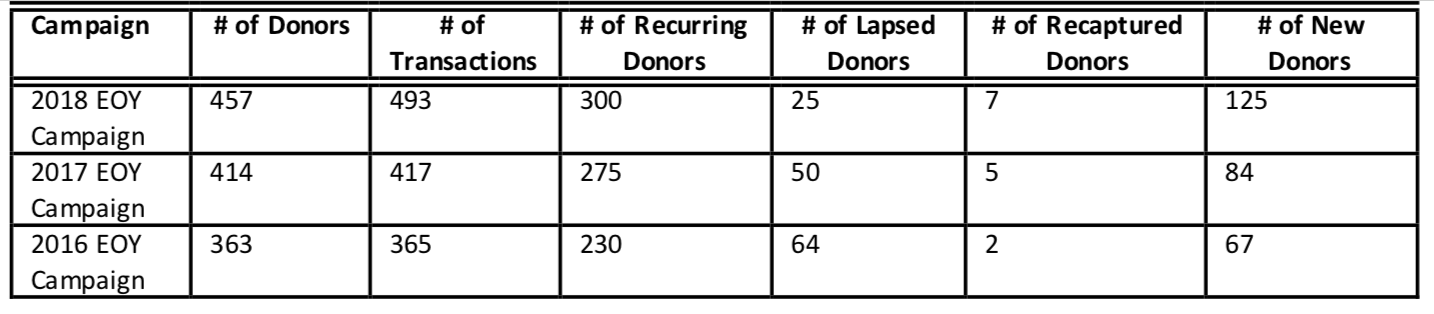 Table containing donor data for a end-of-year fundraising campaign audit.